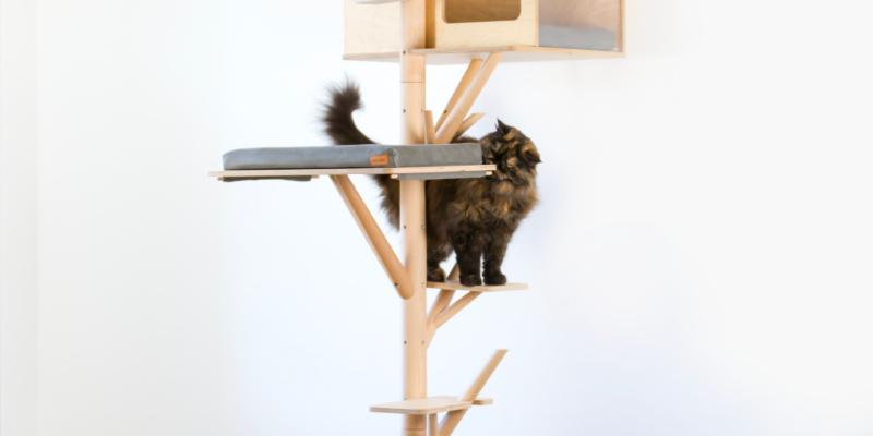 Arbre à chat au design scandinave avec Eden chat persan